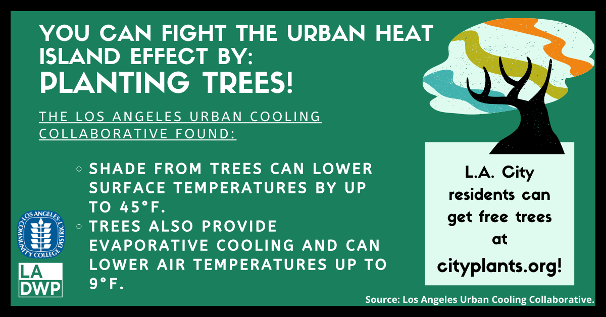 You Can Fight the Urban Heat Island Effect By: Planting Trees! The Los Angeles Urban Cooling Collaborative found:  Shade from trees can lower surface temperatures by up to 45°F.  Trees also provide evaporative cooling and can lower air temperatures up to 9°F. L.A. City Residents can get free trees at cityplants.org!