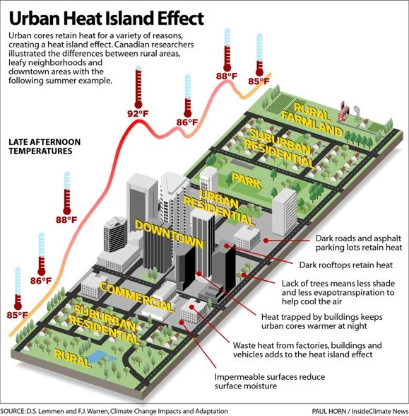 Urban Heat Island Effect (Explained): Urban cores retain heat for a variety of reasons, creating a heat island effect. Canadian researchers illustrated the differences between rural areas, leafy neighborhoods and downtown areas with the following summer example (diagram). Diagram illustrates urban heat island during [hot] late afternoon temperatures. Dark roads and asphalt parking lots retain heat. Dark rooftops retain hear. Lack of trees means less shade and less evapotranspiration to help cool the air. Heat trapped by buildings keeps urban cores warmer at night. Waste heat from factories, buildings, and vehicles adds to the heat island effect. Impermeable surfaces reduce surface moisture.