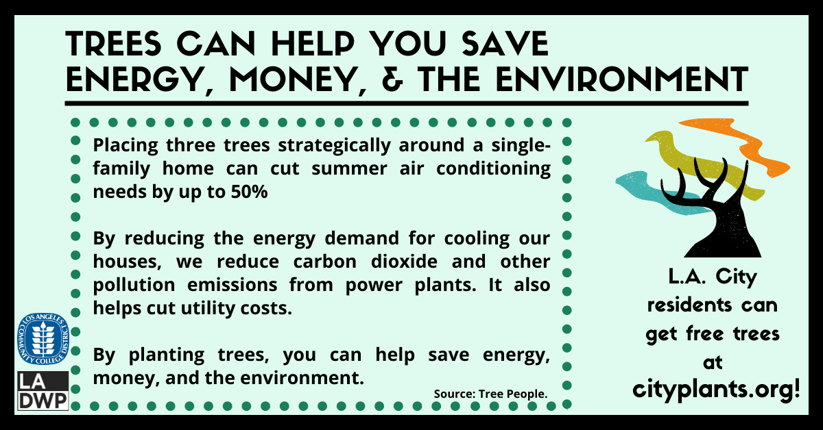 Trees can help you save energy, money, & the environment. Placing three trees strategically around a single-family home can cut summer air conditioning needs by up to 50 percent. By reducing the energy demand for cooling our houses, we reduce carbon dioxide and other pollution emissions from power plants. You can learn more about the benefits of planting trees from Tree People.  The best part is, residents of the City of L.A. can get trees for free! Head tocityplants.orgto order free yard trees and free street trees, and try out City Plant's newinteractive toolto discover the best planting locations in your yard to reduce your energy bills.