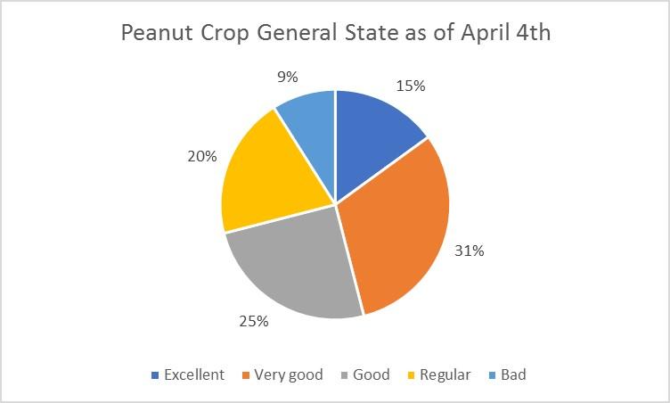 Peanut Crop General State as of april 4th