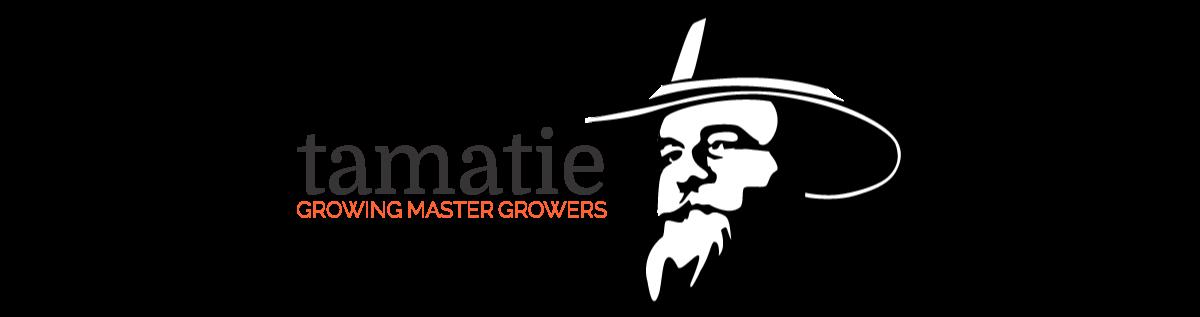 tamatie GROWING MASTER GROWERS