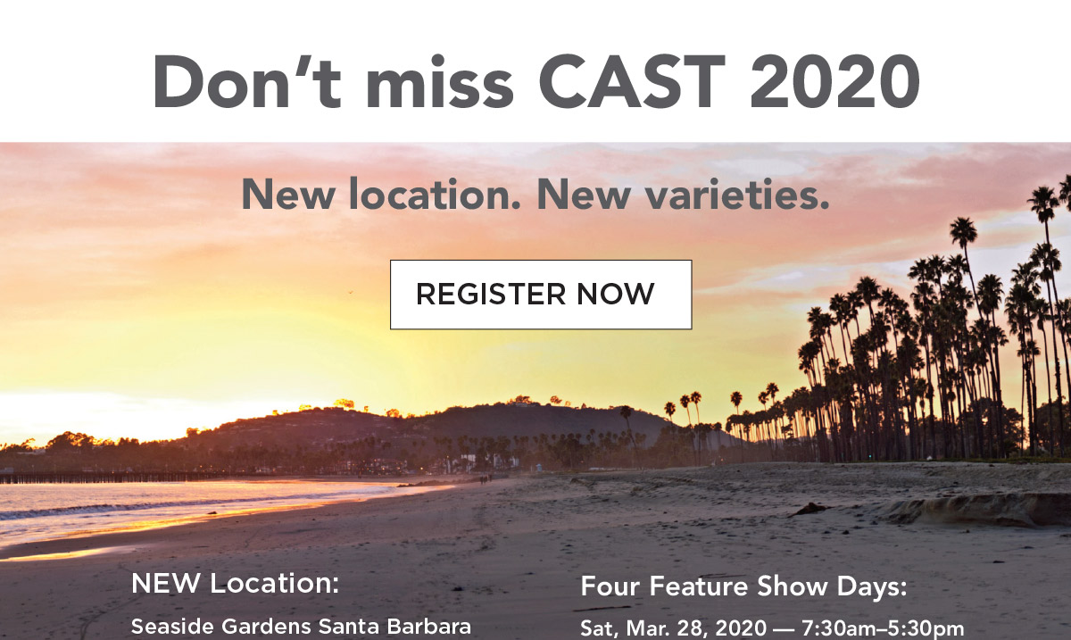 Register today for CAST 2020
