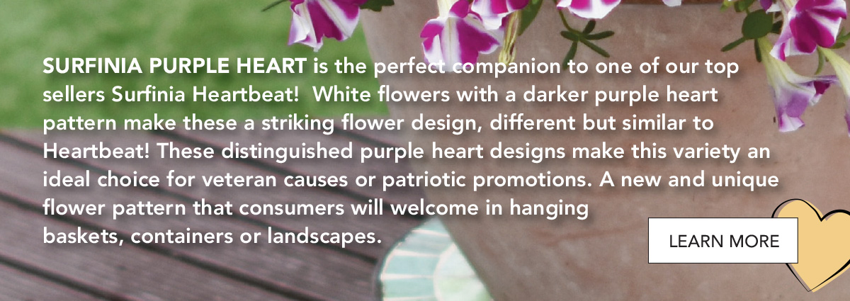 A new and unique flower pattern that consumers will welcome in hanging baskets, containers or landscapes
