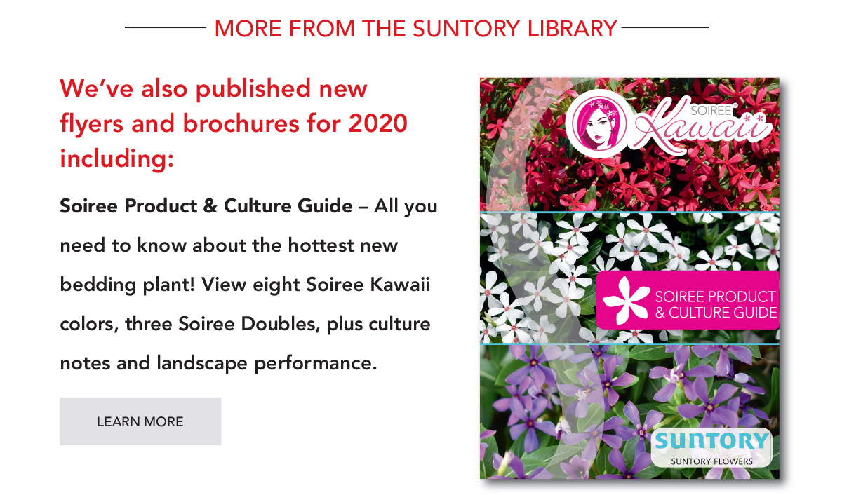 Suntory Soiree Product & Culture Guide - PDF Download.