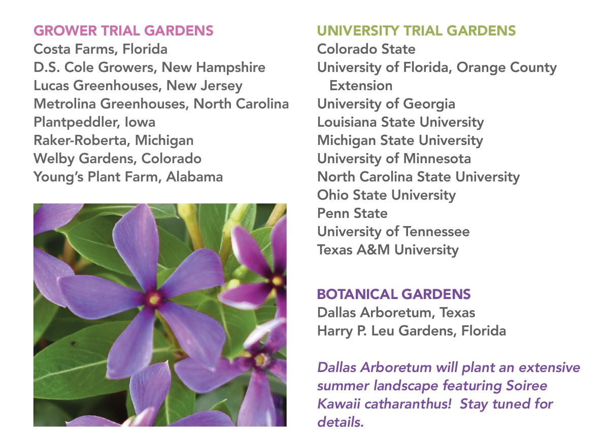 List of Soiree Kawaii Trial Grower, University, and Botanical Gardens