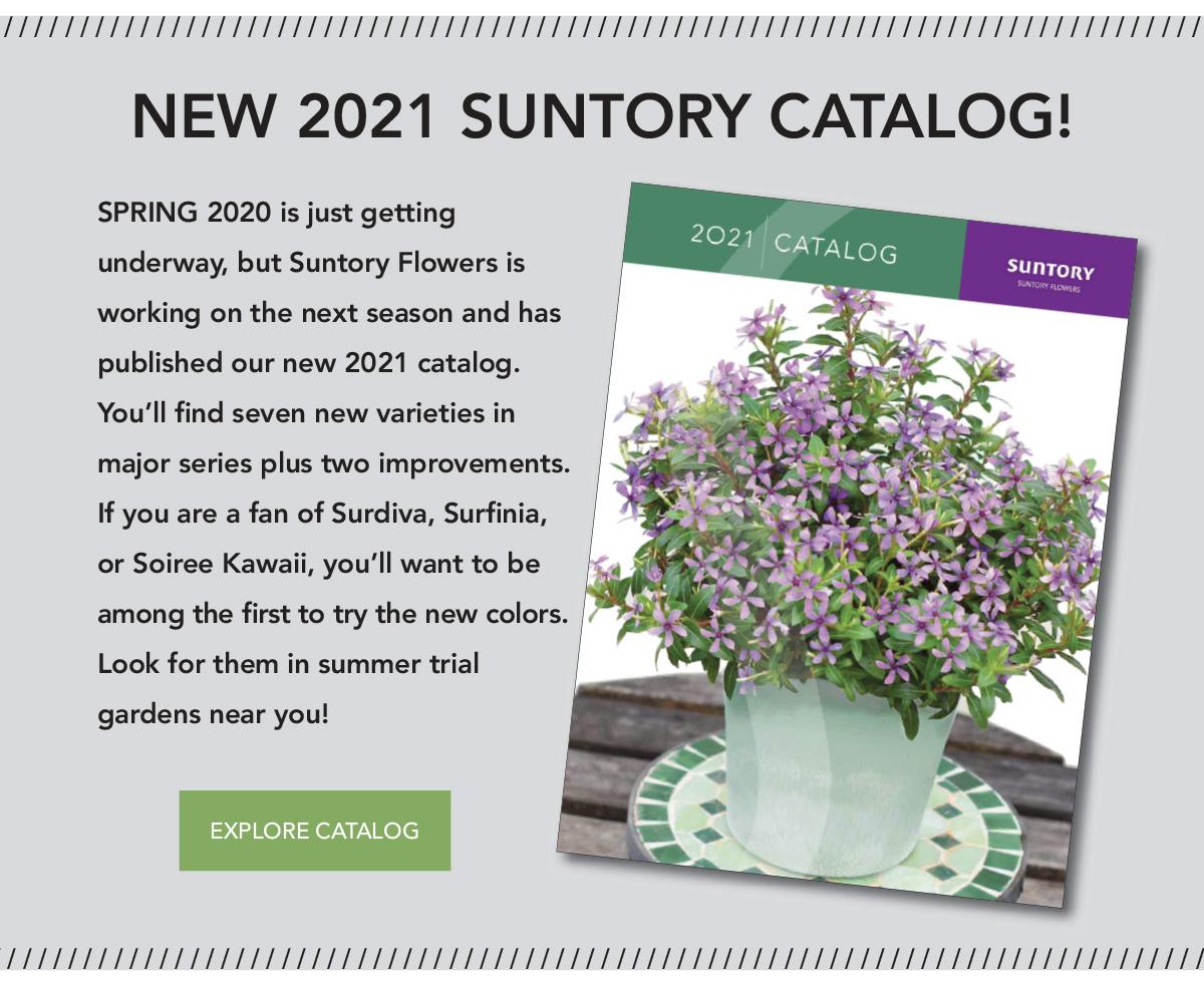 New 2021 Suntory Flowers Catalog
