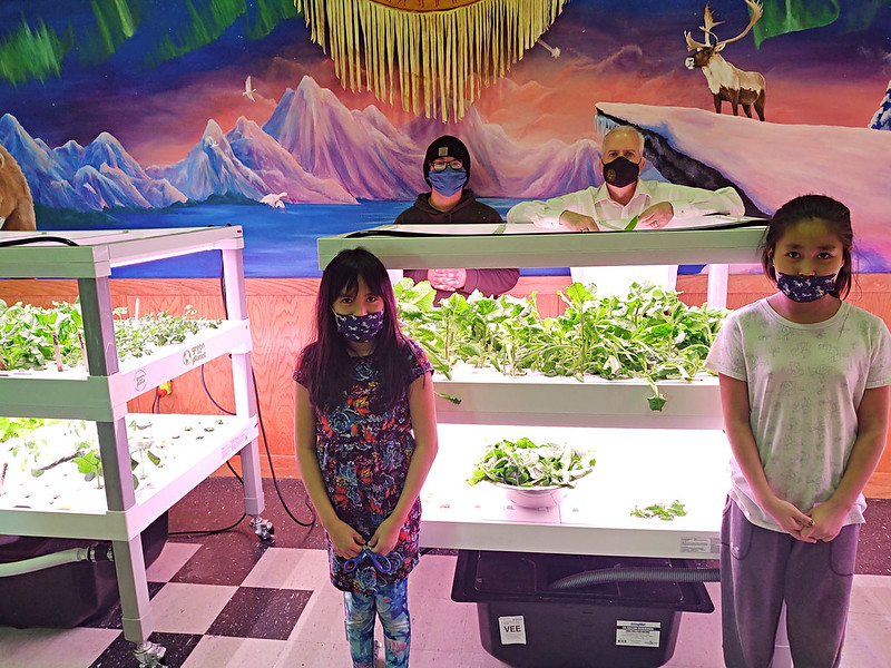 school hydroponics