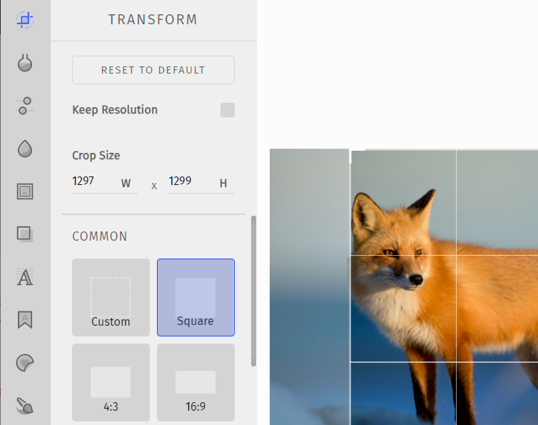 Crop, Resize, and Rotate options for image editing