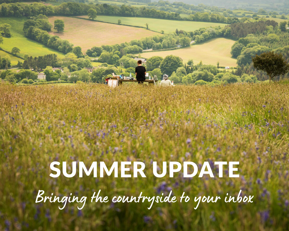 Summer Update - Bringing the countryside to your inbox