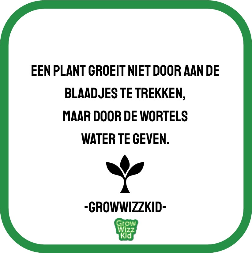 GrowWizzKid quote 12