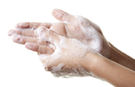 A pair of soapy hands being washed.