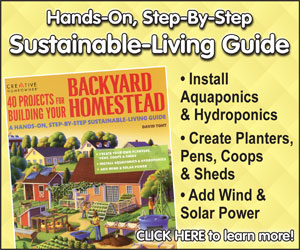 Projects for Backyard Homesteads