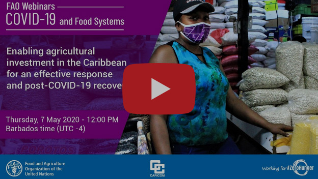 Enabling Agricultural Investment in the Caribbean for an Effective Response and Post-COVID-19 Recovery