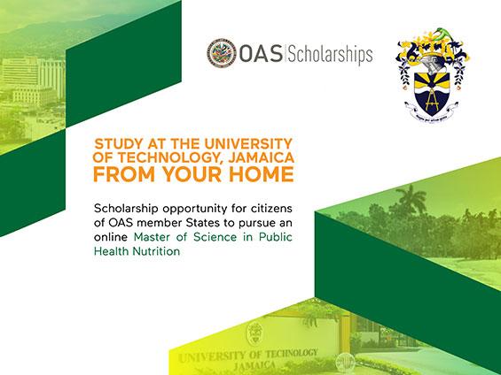 OAS Scholarship Opportunity