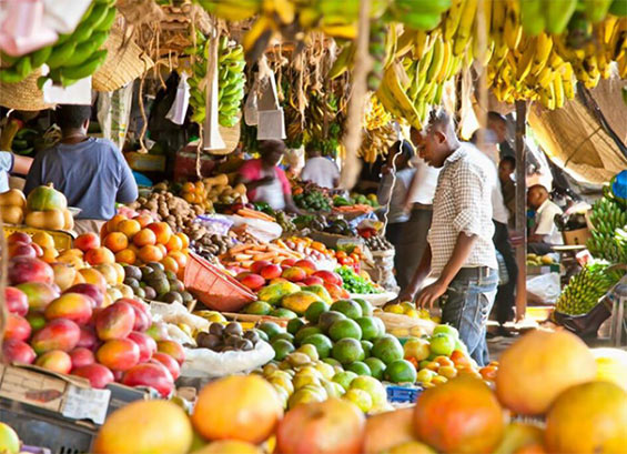 Guyana Can Aid Food Security in CARICOM