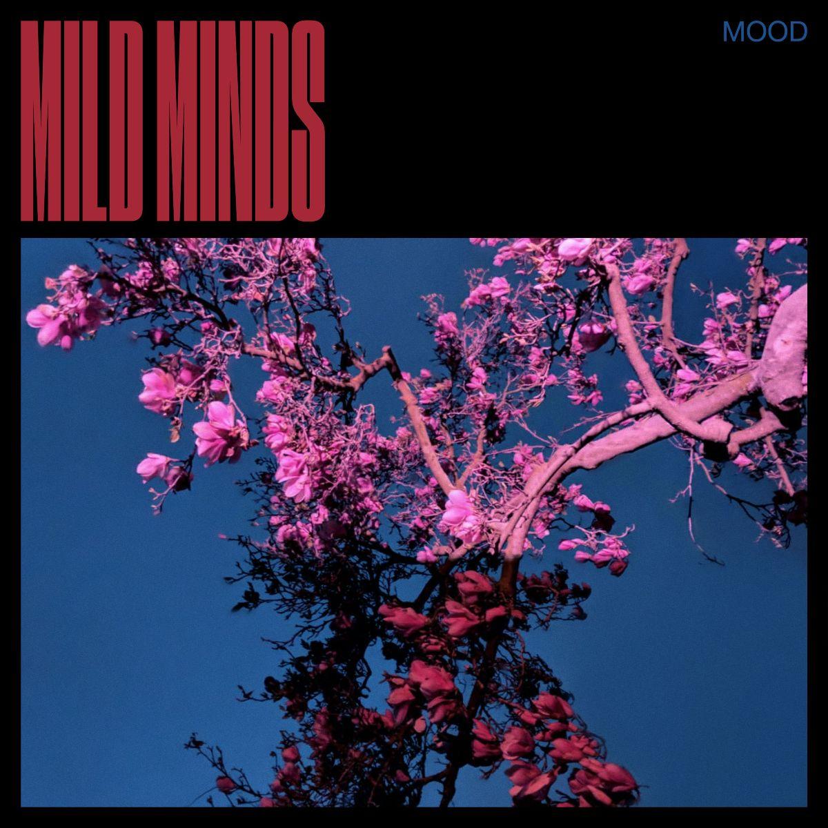 "Mild Minds estrena video en vivo para ""DOPAMINE"""