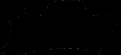 Logo disagian