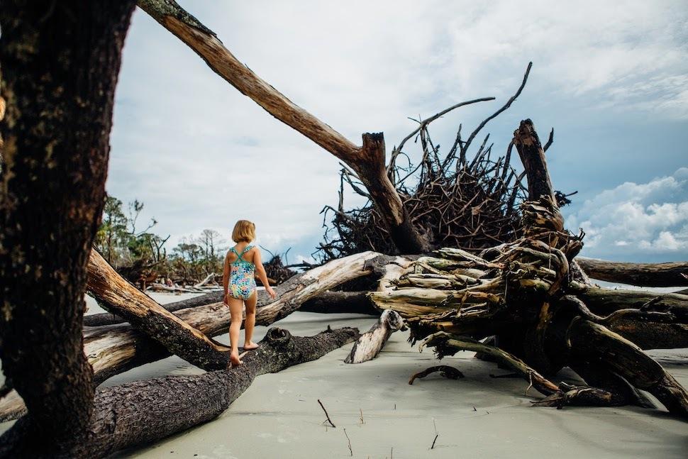 child on driftwood