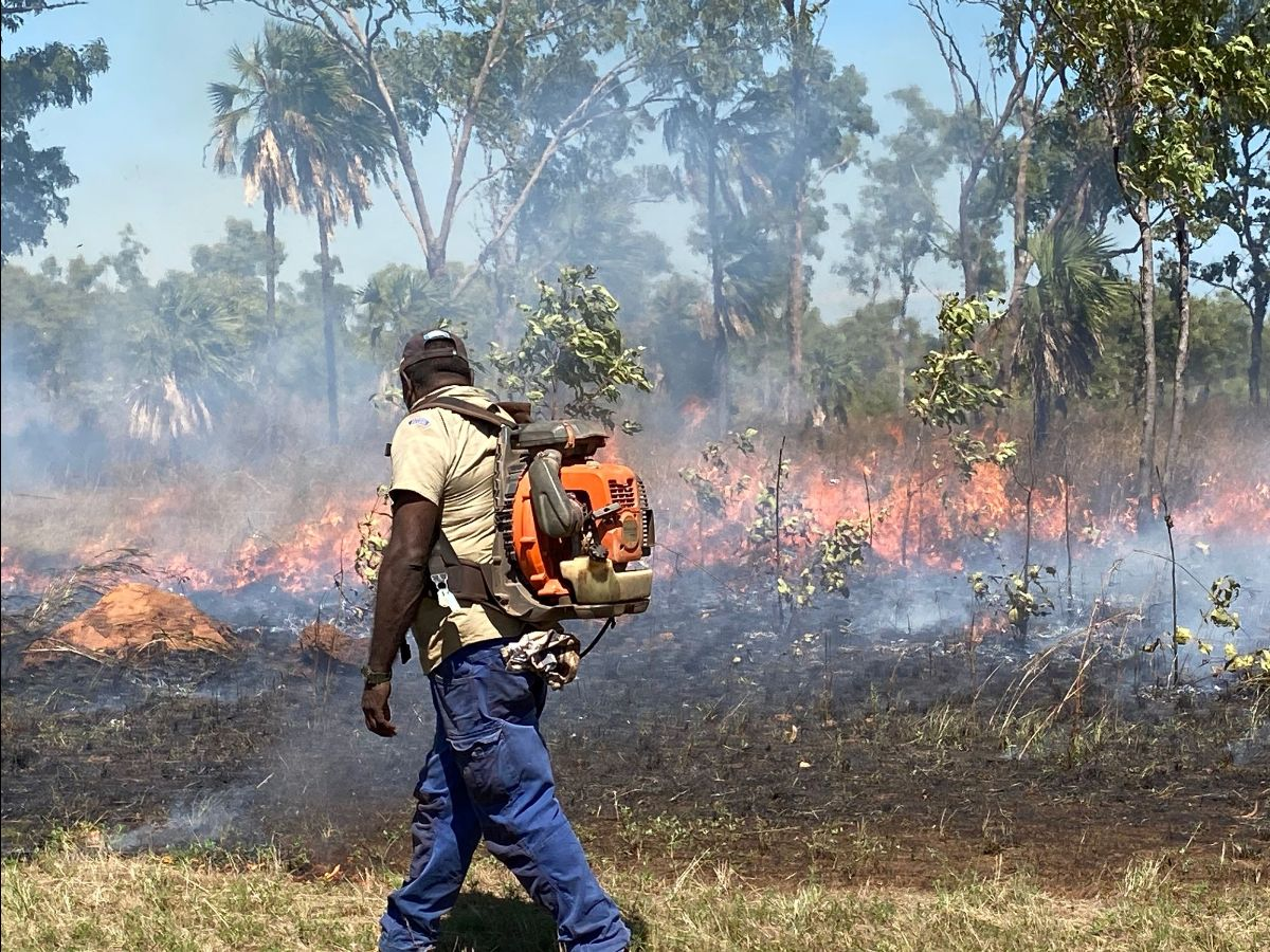 Uunguu Senior Ranger Neil Waina savanna burning on Wunambal Gaambera country in the north Kimberley region May 2020