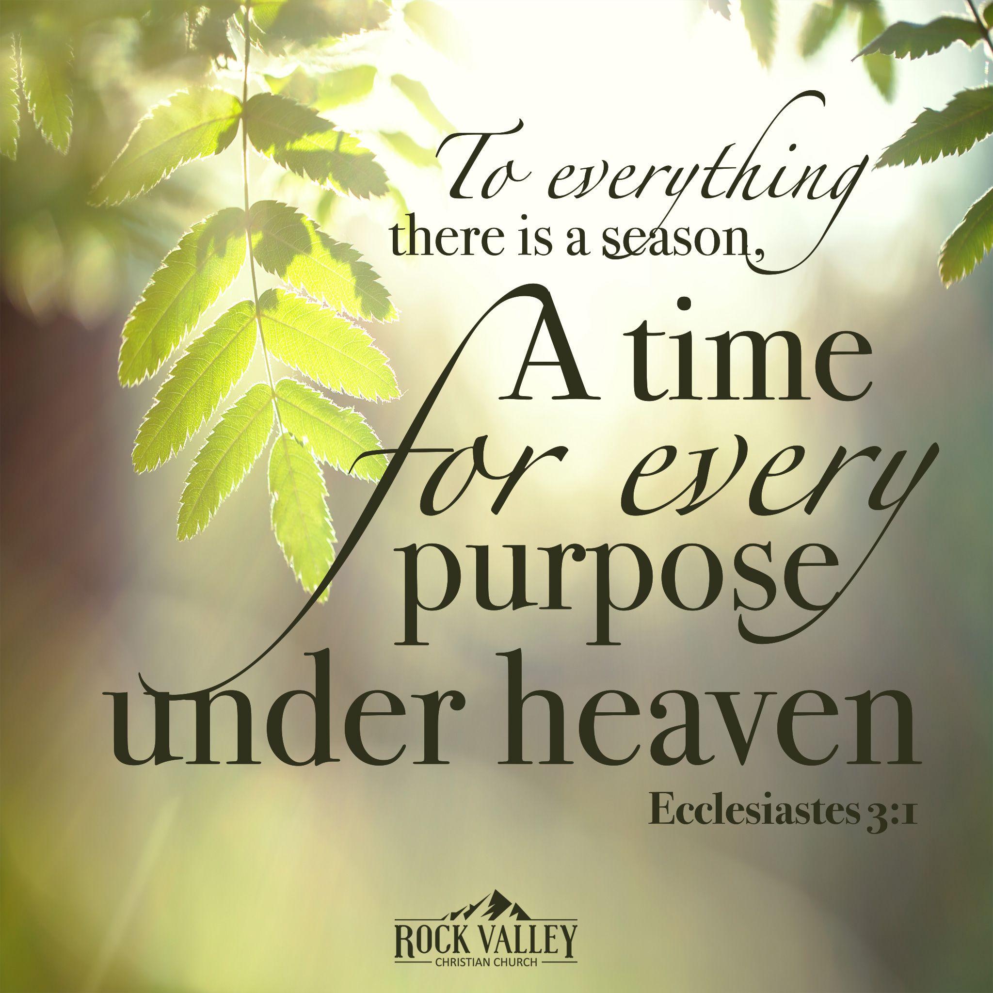 Ecclesiastes quote
