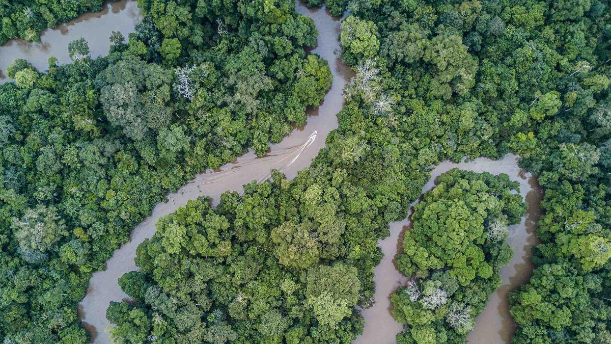 Congo Basin Waterways