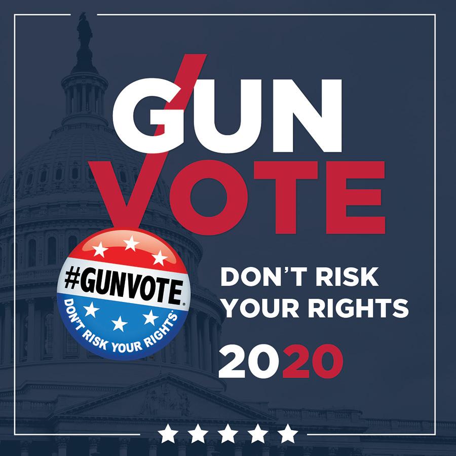 Gun Vote 2020