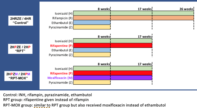 Results of a 4-month treatment based on rifapentine and moxifloxacin