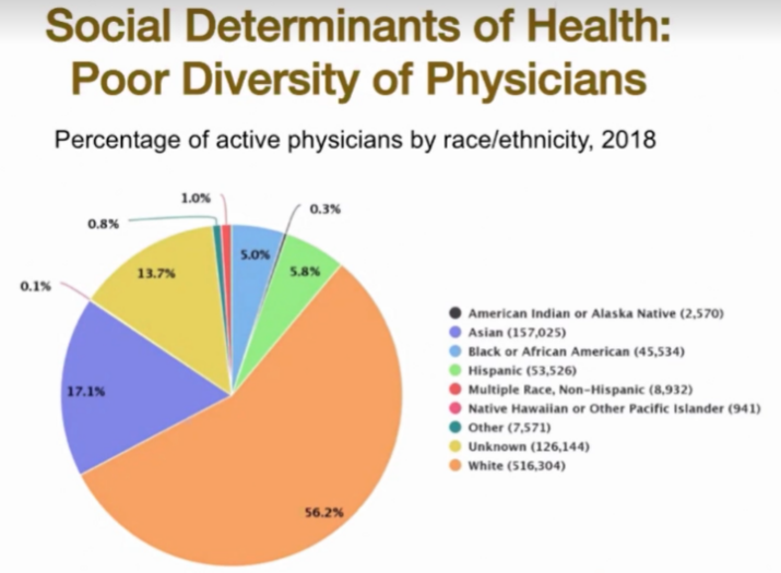 pie chart showing percentage of active physicians by race/ethnicity.