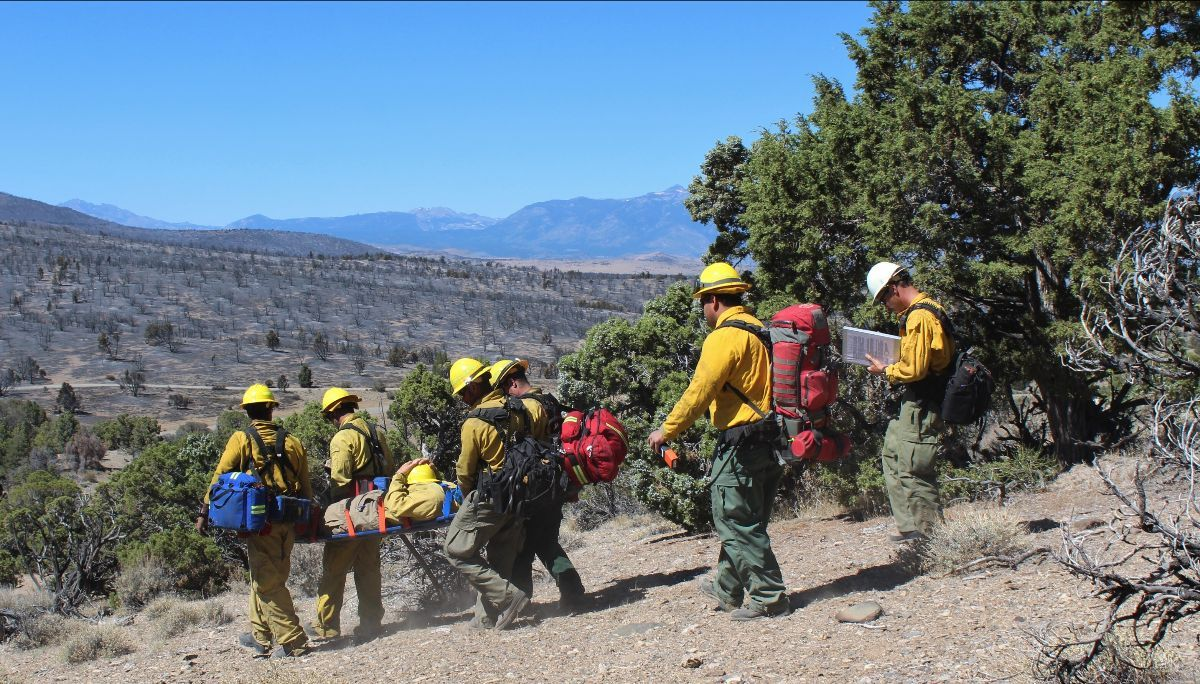 Multiple firefighters carry another firefighter on a backboard down a hill through an area with burned sage and juniper in the background