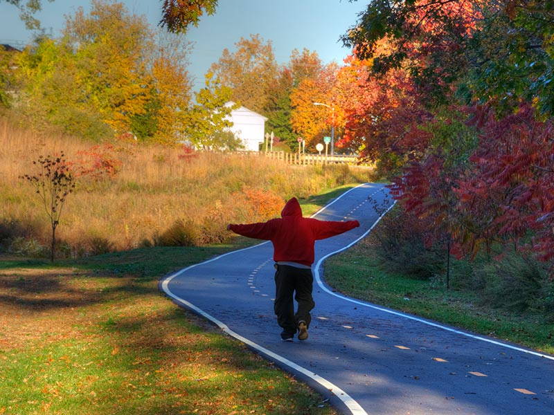 Biking and Running Trails at the Park