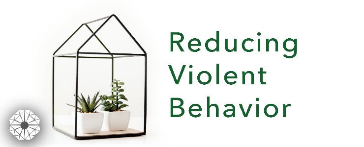 Reducing Violent Behavior