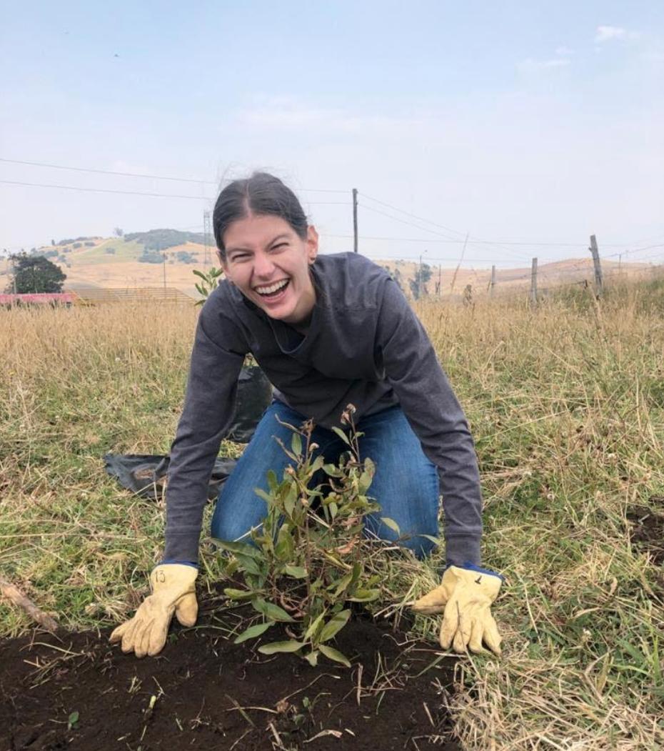 Planting trees with Fundacion Biblioseo