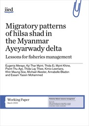 Migratory patterns of Hilsa shad in the Myanmar Ayeyarwady delta. Lessons for fisheries management