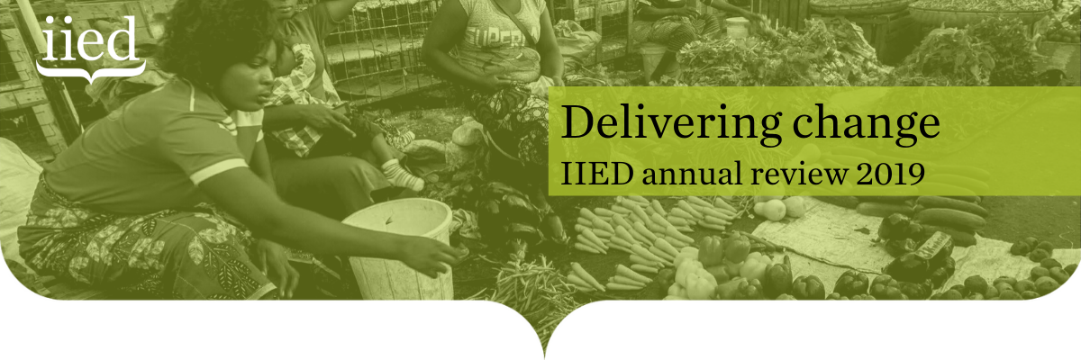 Delivering change: IIED annual review 2019