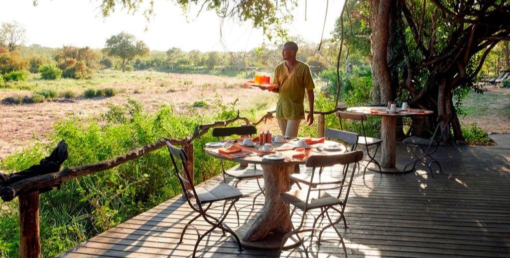 Motswari Safari Lodge - Timbavati in Zuid-Afrika