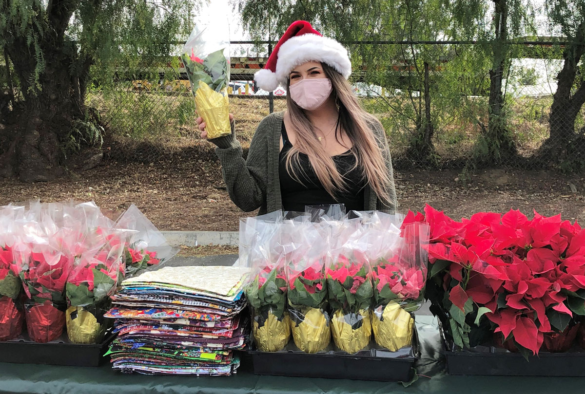 A volunteer prepares to hand out poinsettias at the Ramona Senior Center's drive-thru holiday party